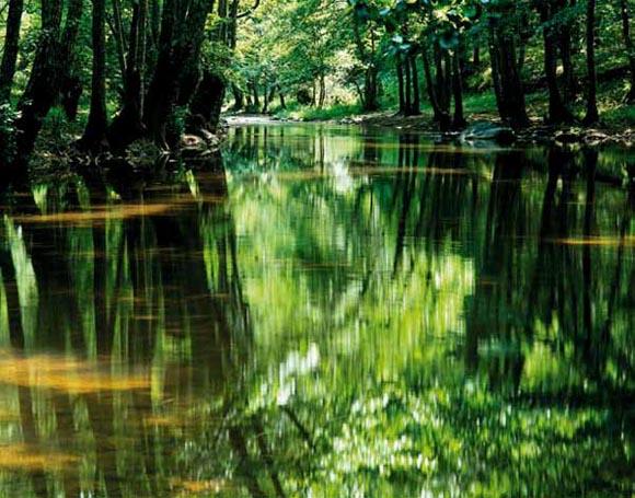 """Река Велека, Природен парк """"Странджа"""". Снимка: Александър Иванов"""